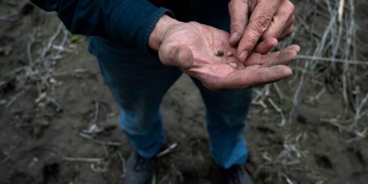 """Des inondations rares plongent un couple de fermiers américains en """"terre inconnue"""""""