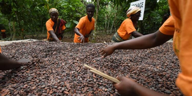 Cacao: Ghana et Côte d'Ivoire lèvent la suspension de leurs ventes