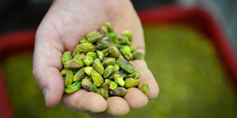 Pas d'apéro sans pistaches de France! Le pari d'agriculteurs en Provence