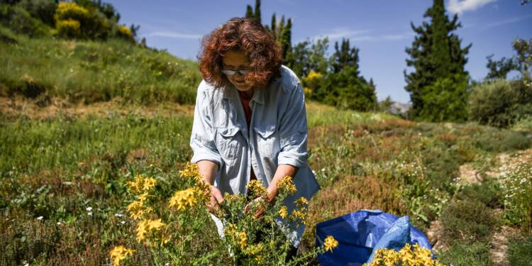 Sur les routes de Grèce: dans le golfe de Corinthe, d'autres façons de survivre à la crise