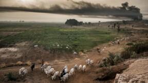 Peuls au Nigeria: la guerre de la terre