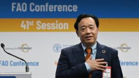 Après l'élection à la FAO, le modèle agricole et alimentaire chinois en question
