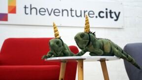 """Avec ses """"iguanacornes"""", Miami se rêve en nouvelle Silicon Valley"""