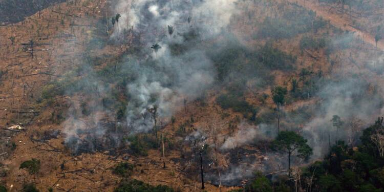 Amazonie : les incendies se multiplient, le Brésil se décide à passer à l'offensive