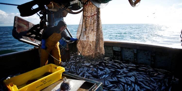 Brexit: les esprits des pêcheurs commencent à s'échauffer