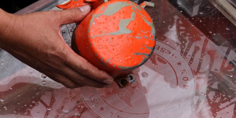 Crash de Lion Air: l'Indonésie met en cause le Boeing 737 MAX, selon le Wall Street Journal