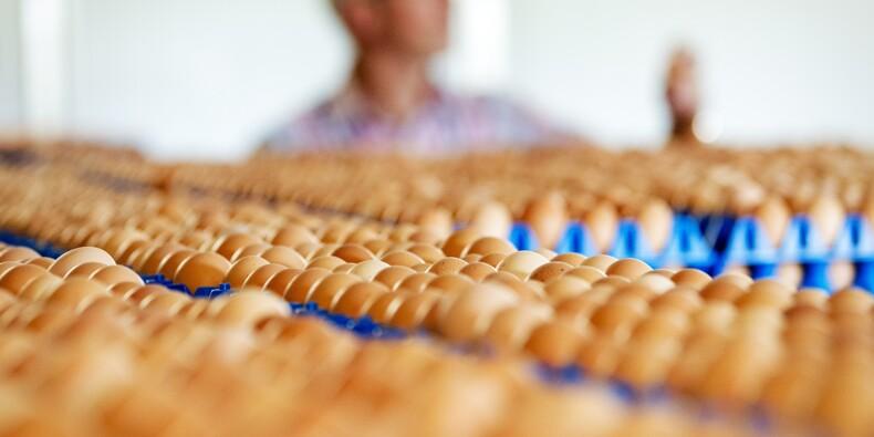 L'affaire des oeufs contaminés néerlandais prend de l'ampleur en Europe