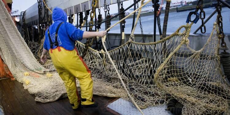 """L'interdiction de la pêche électrique, une """"catastrophe"""" pour les pêcheurs néerlandais"""