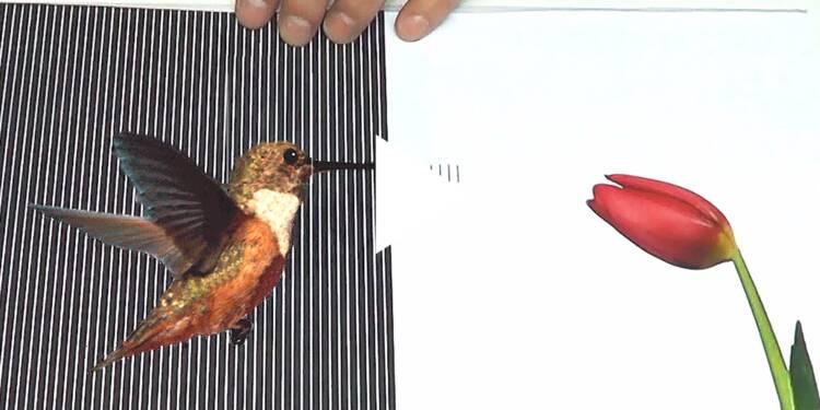 VIDEO: Ce film transparent en plastique donne l'impression que les dessins qu'il recouvre sont en mouvement