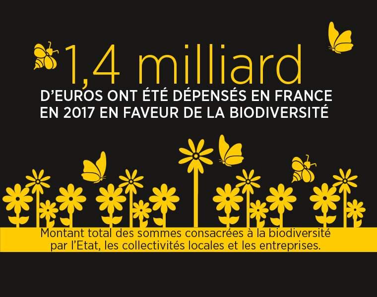 Plus d'un milliard d'euros dépensé en France pour la biodiversité