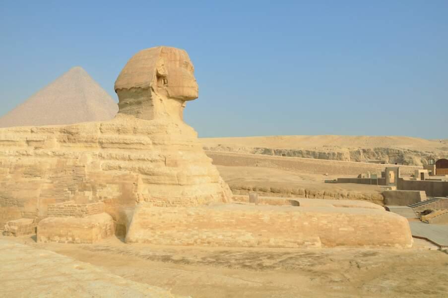 Egypte : l'abandon du régime de change fixe a laminé la devise