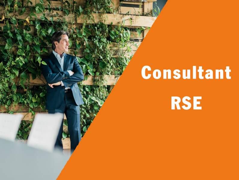Consultant RSE - Il conseille l'entreprise sur son développement durable