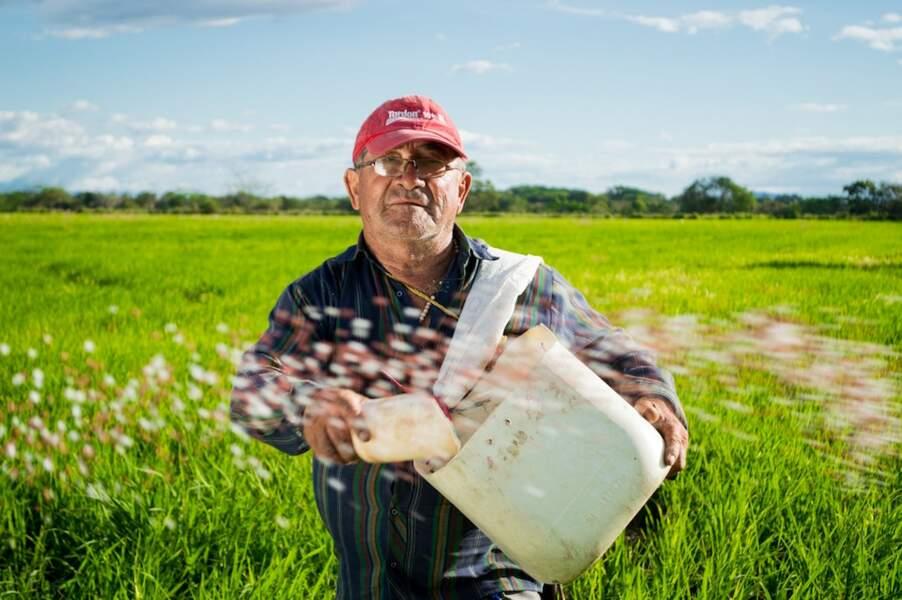 11.Agriculteurs, éleveurs, sylviculteurs, bûcherons