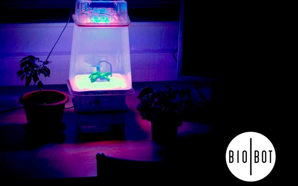 Biobot, une serre interactive