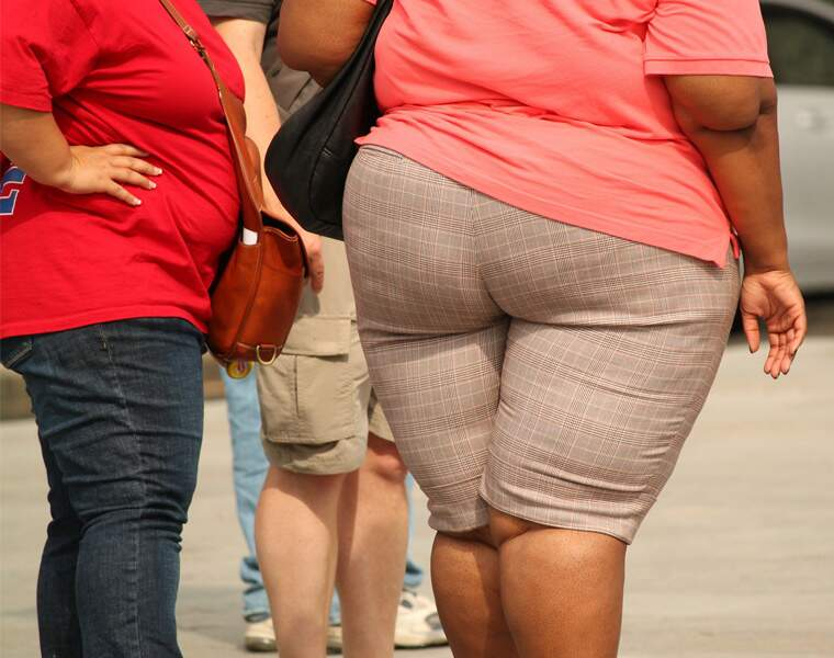 Des cellules gourmandes pour réduire l'obésité