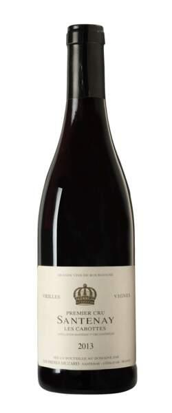 Bourgogne, Santenay 1er cru, Les Cabottes 2013, Les Frères Muzard
