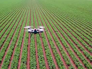Médias, agriculture, immobilier... les 8  métiers qui font décoller les drones professionnels