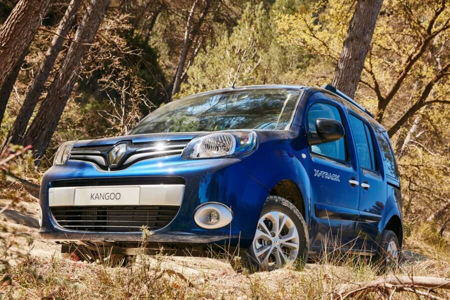 N°5 - Renault Kangoo
