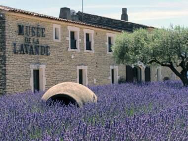 Provence : ces usines à visiter pendant les vacances