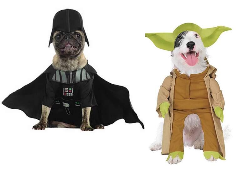 Le déguisement pour chiens