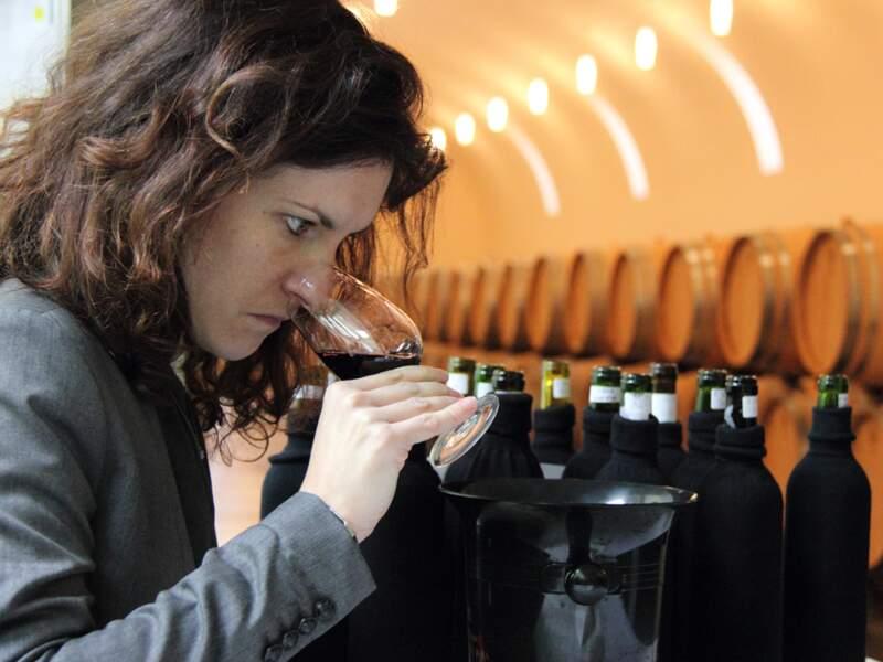 3 500 vins à tester