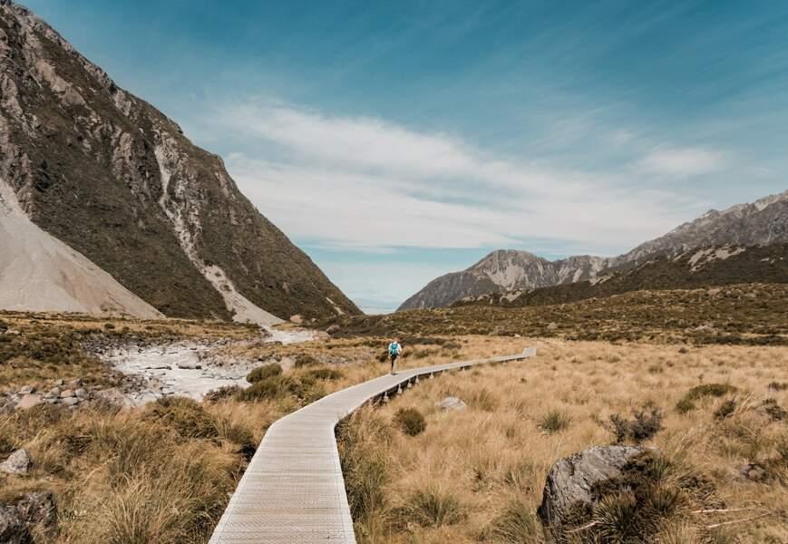 Nouvelle-Zélande : vous voulez reprendre une entreprise ? Ce pays est pour vous !