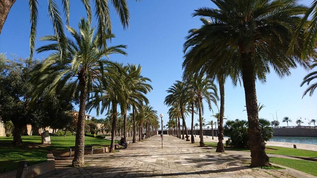 Brest - Palma de Majorque