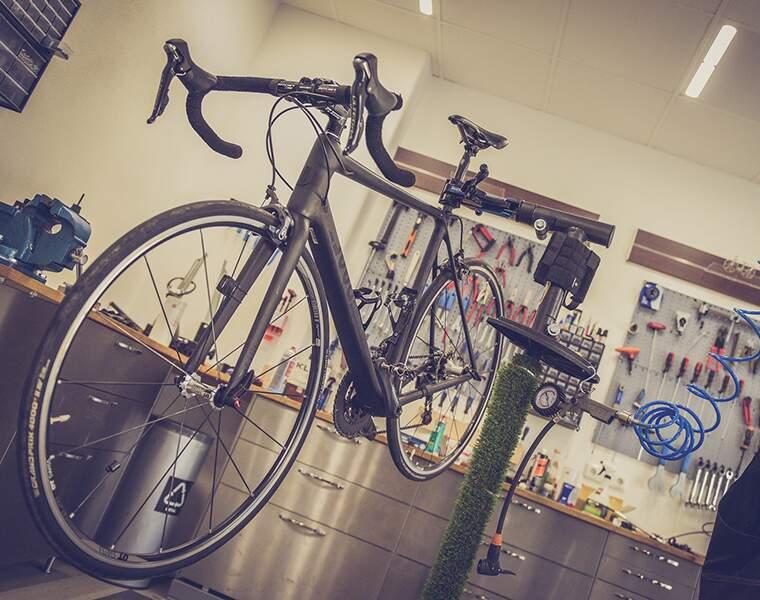 Les magasins de vélos : +57%