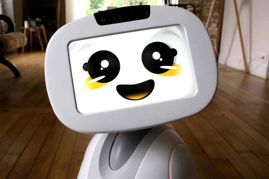 Blue Frog Robotics : un robot d'intérieur