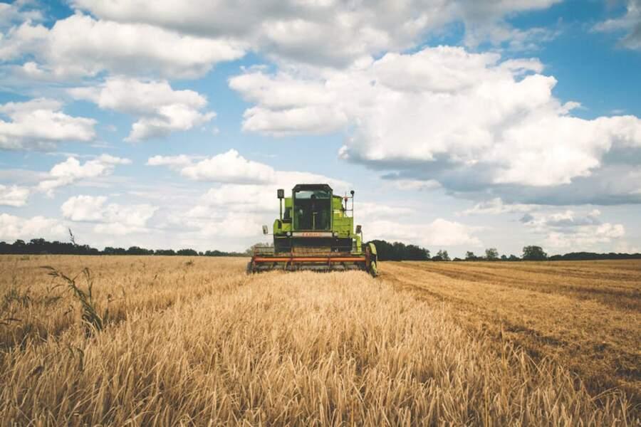 6.Agri Intérim, l'intérim des champs