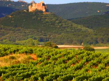 13 vins légers pour des vacances ensoleillées
