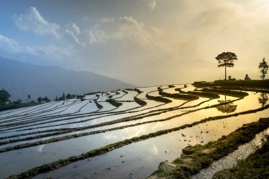 Vietnam - Aucun jeu d'argent n'est autorisé