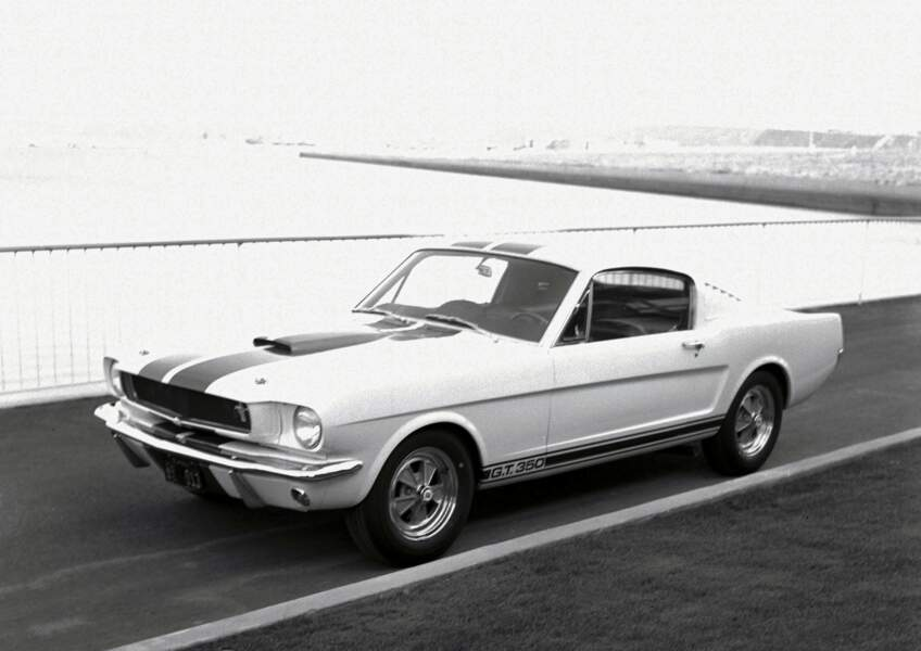 1965 : Shelby GT350