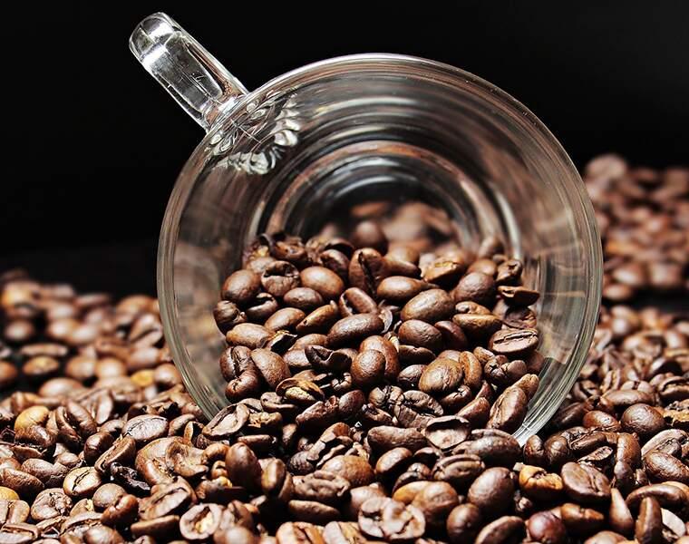 L'avenir c'est le marc de café… recyclé