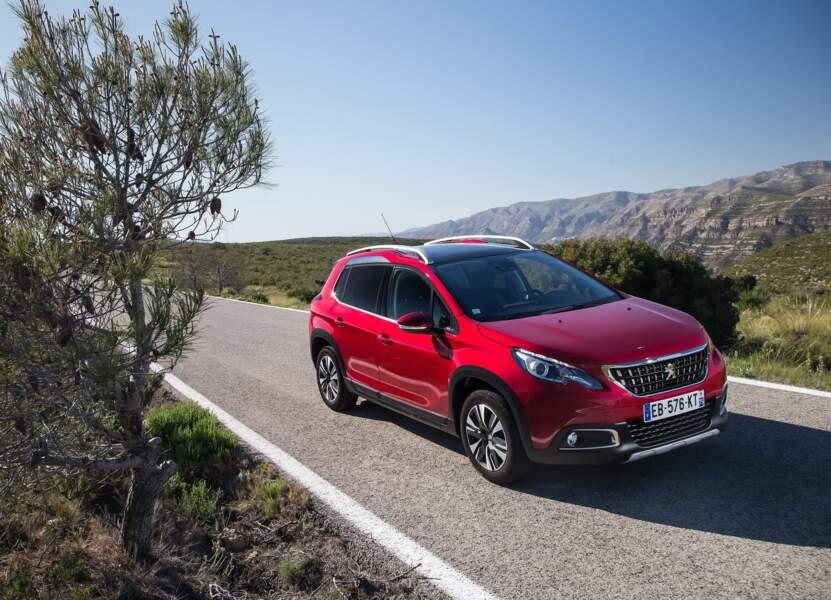 6 - Peugeot 2008 (6.445 ventes)
