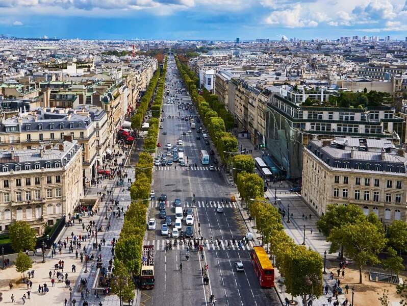 Avenue prestigieuse