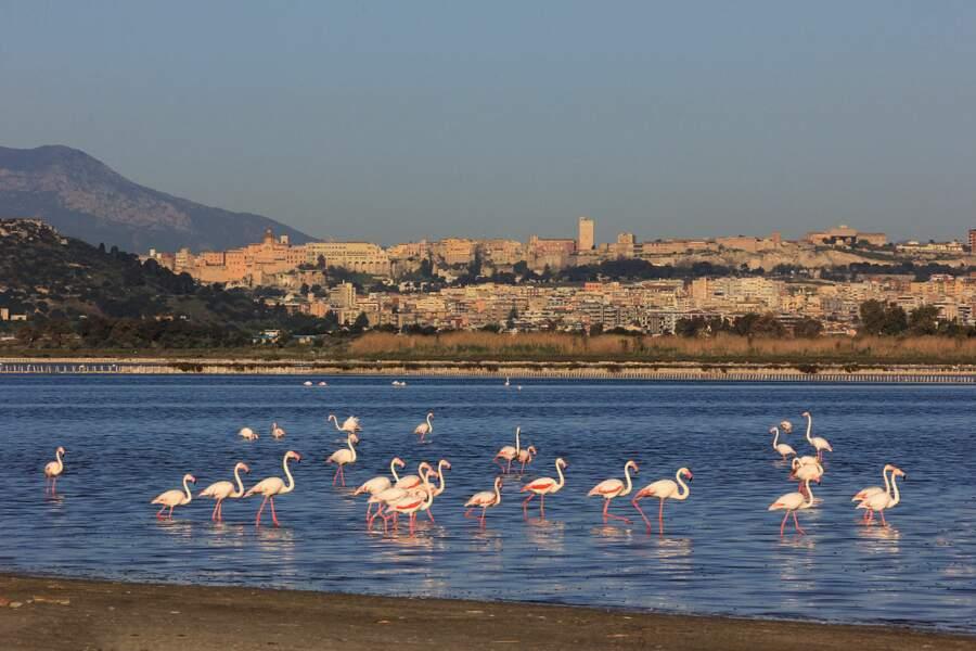 Marseille - Cagliari
