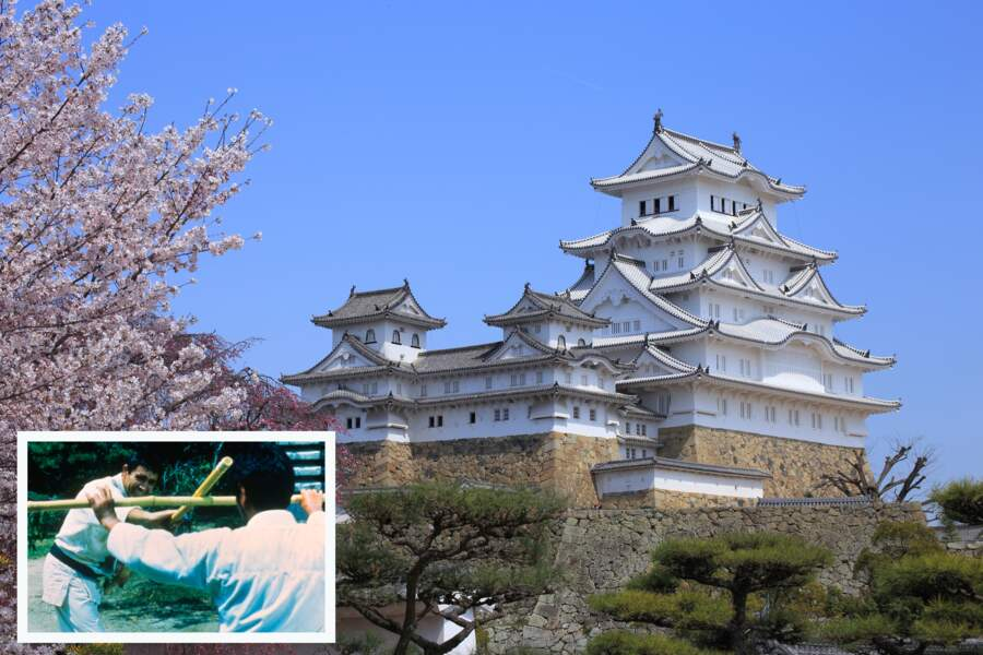 Le château d'Himeji (Japon)