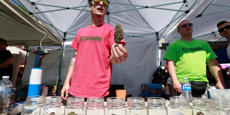 Canada: appétit des producteurs de cannabis avant la légalisation