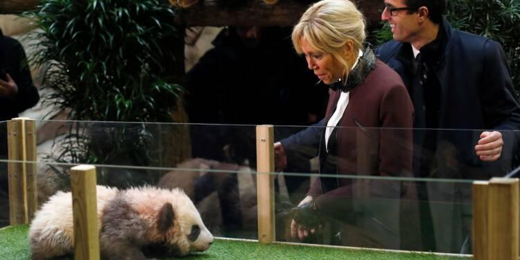 Brigitte Macron baptise le bébé panda né en France, un geste diplomatique