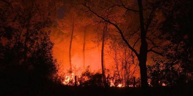 Médoc : un violent incendie ravage plus de 600 ha de forêt