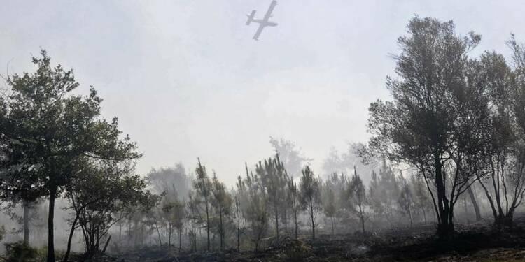 700 hectares de forêt détruits par des feux en Gironde