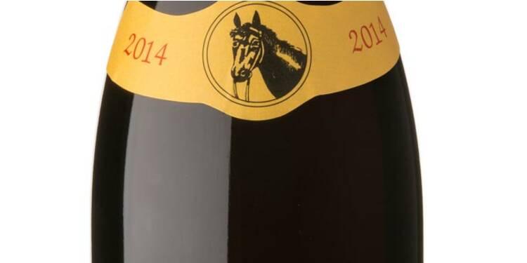 Les 10 meilleures bouteilles de vin rouge des foires aux vins 2015