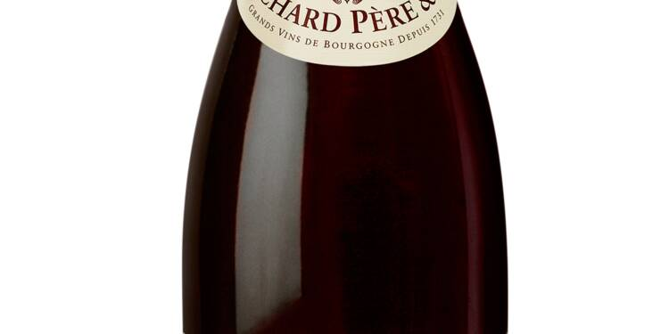 Les 10 meilleures bouteilles de bourgogne des foires aux vins 2016