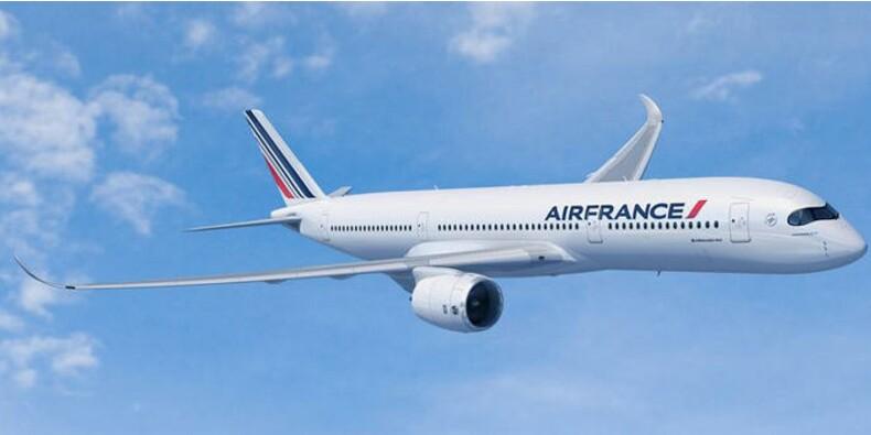 Air France s'envole en Bourse grâce à la chute du baril de pétrole