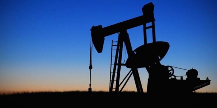 Le baril de pétrole ne devrait pas dépasser 60 dollars en 2017