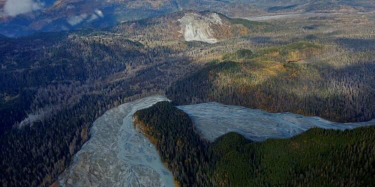 Dix pour cent des terres sauvages ont disparu en vingt ans