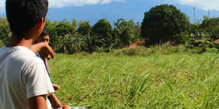 Sucre: naissance d'un des plus gros exportateurs du monde