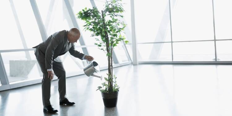 Jardins, potagers,... des bureaux plus verts pour des salariés plus performants