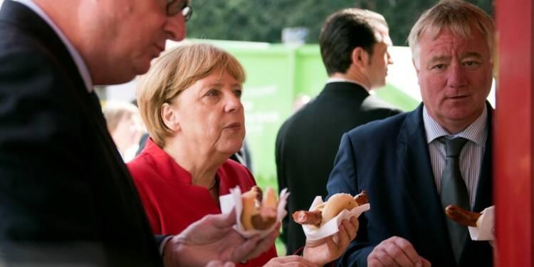 L'AfD le vent en poupe dans le land de Merkel